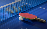 Adarsh Mayberry apartments Table Tennis